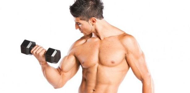 Tipps gegen Muskelabbau